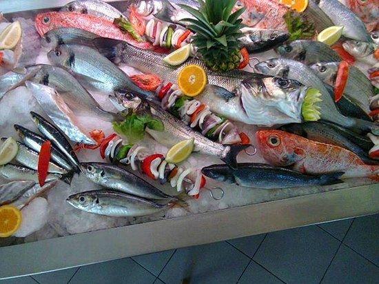 Restaurante O Febras: O melhor Peixe Fresco da Região!
