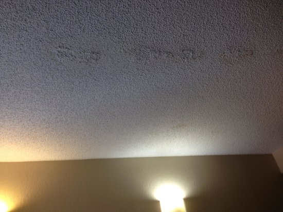 Hampton Inn College Station: Ugly ceiliing damage in two places, one quite large
