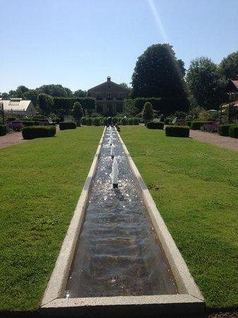 Horticultural Gardens (Tradgardsforeningen): Garden