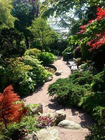 Horticultural Gardens (Tradgardsforeningen): small paths
