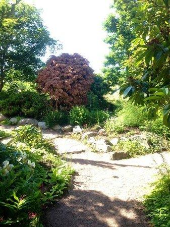 Horticultural Gardens (Tradgardsforeningen): more paths