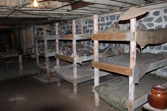 Pendleton Underground Tour: Chinese underground bed