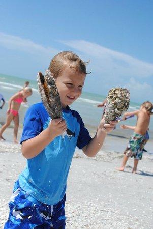 Sanibel Sea School Day Program: Discovering Pin Shells
