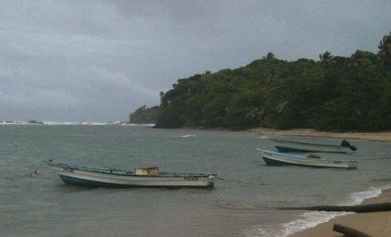 Galera Point - Toco Lighthouse: Salybia Beach