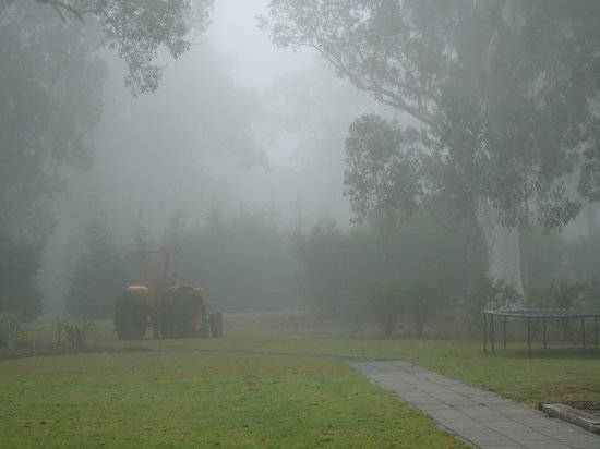 Banksia Park Cottages: Tractor in the fog