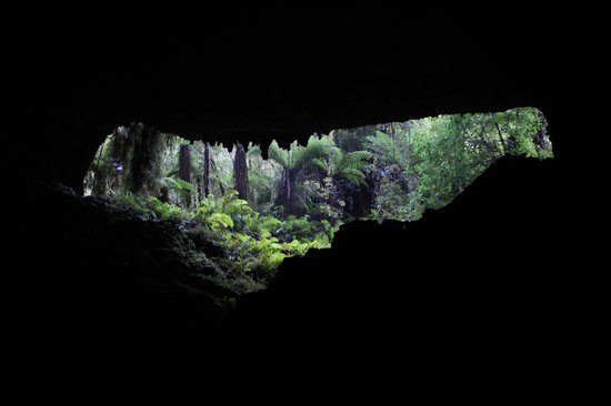 Oparara Kahurangi National Park Guided Tours: The exit from Honeycomb Caves