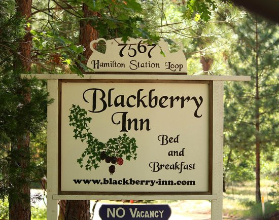 Blackberry Inn at Yosemite: Blackberry Inn