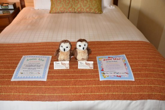 Four Seasons Resort Maui at Wailea: Check in gifts for the kids