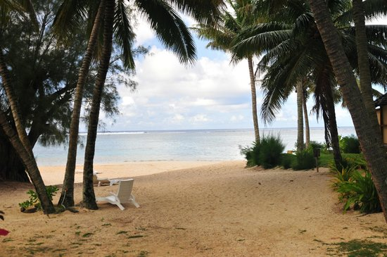 Palm Grove: The beach across the road.