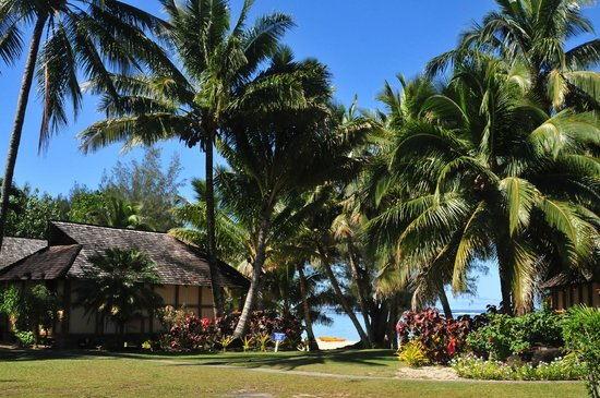 Palm Grove : The access to the beach from our bungalow