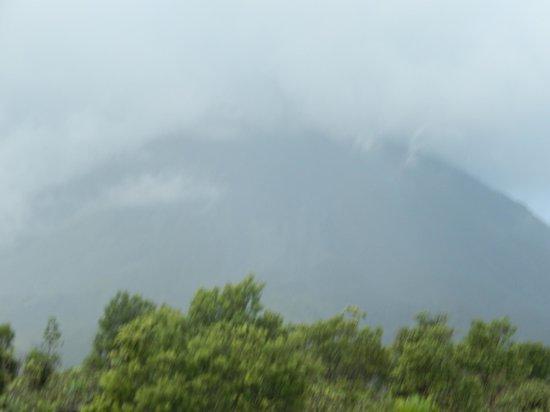 Pura Vida Tours: Arenal Volcano Hike
