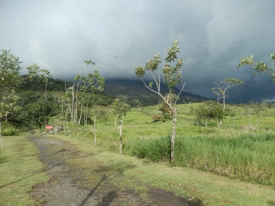 Pura Vida Tours: Arenal Volcano Hike Trail