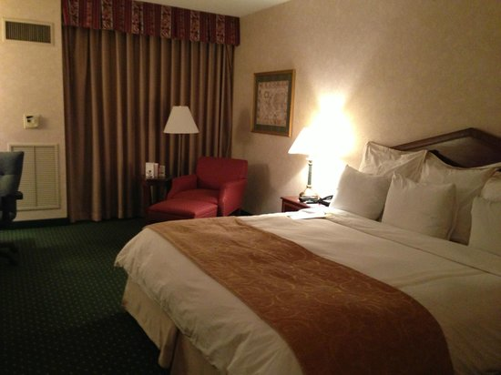 Hartford/Windsor Marriott Airport: King room