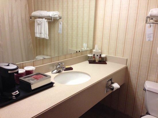 Hartford/Windsor Marriott Airport : Standard bathroom
