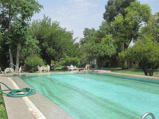 Narain Niwas Palace: la piscine