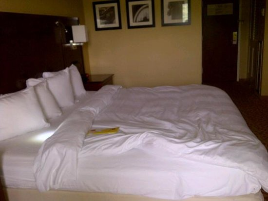 Westchester Marriott: King Size Bed fits nicely