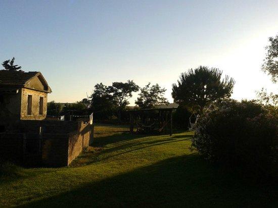 Agriturismo Al Girasole : Vista dalla camera
