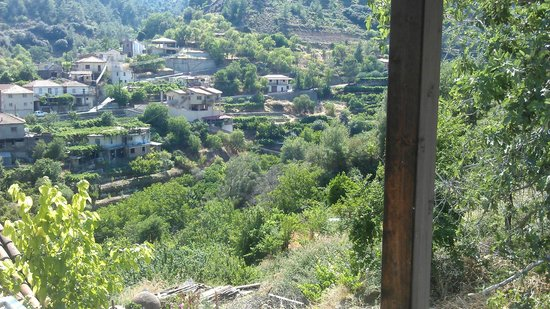 Ambelikos AgroHotel: View of the valley from our balcony.
