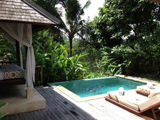 Komaneka at Tanggayuda: Plunge pool at Pool Villa