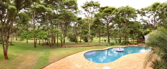 Thorntree Riverside Lodge: View of pool and grounds from lodge