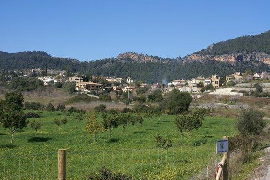 CR4 Calvia Vila - Es Capdella Trail