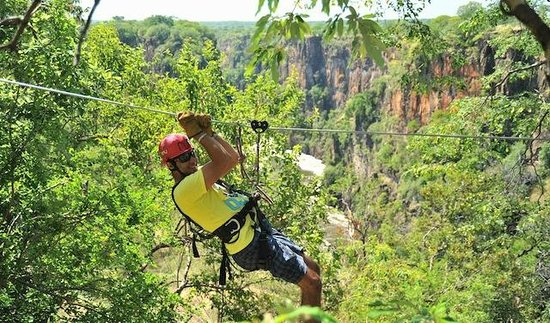 Wild Horizons Vic Falls Canopy Tour: The Vic Falls Canopy Tour