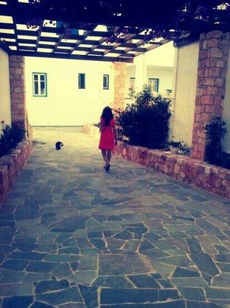 Glaronisia Hotel: η φωτογραφια τα λεει ολα