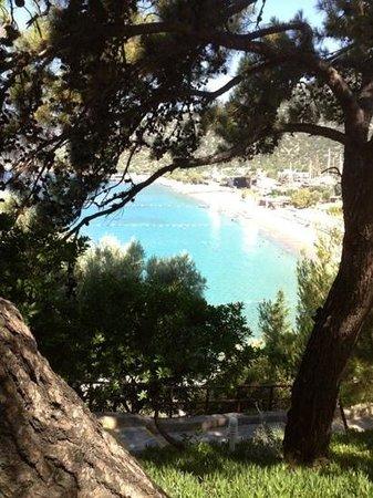 Club Med Bodrum Palmiye: Ajouter une légende