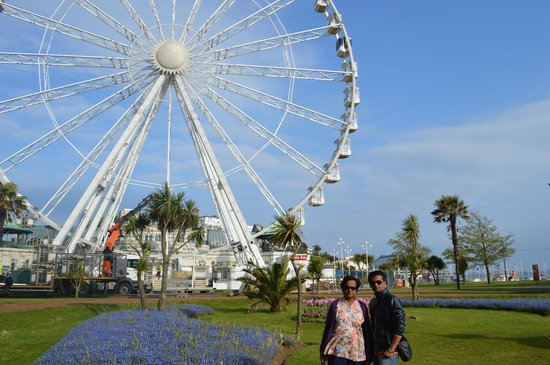 Town of Torquay: Tulips and Giant wheel