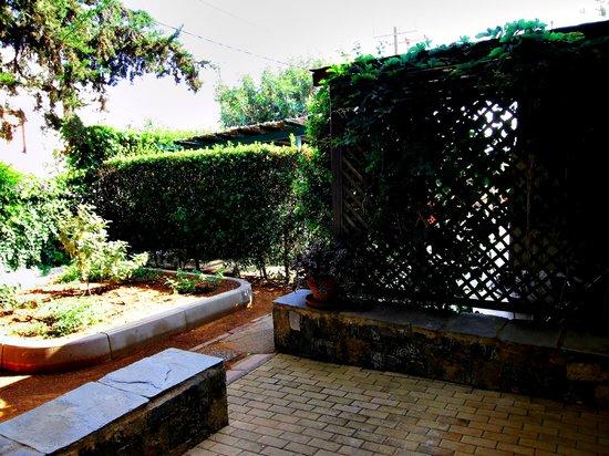 Creta Solaris Hotel Apartments: Вид из номера, первый этаж