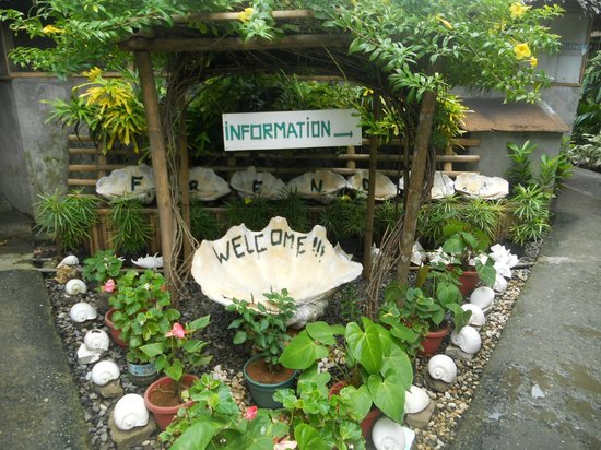 Frendz Resort and Hostel Boracay: Garden area