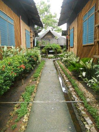 Frendz Resort Boracay: Garden hall way