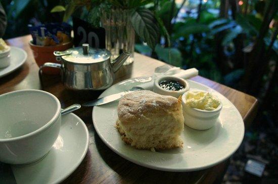 Botanic Gardens Restaurant Cafe: Devonshire Tea