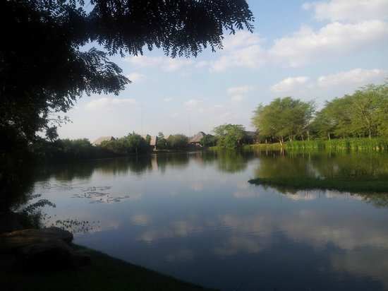 Ngwenya Lodge: one of the lovely dams with the chalets built around it