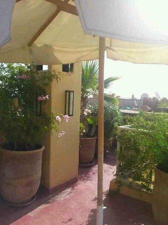 Riad Cocoon : Terrasse