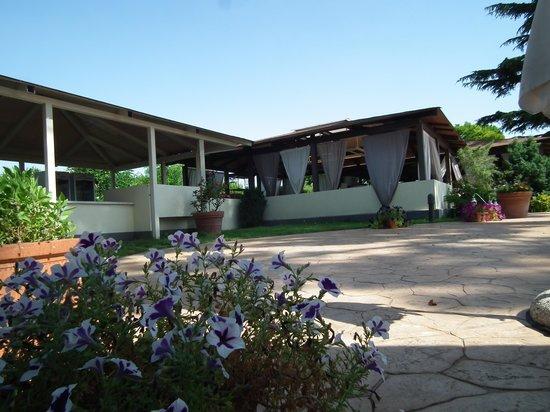 Domus Park Hotel: Vista dal giardino