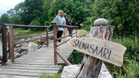 Helsingin Saunasaari Oy