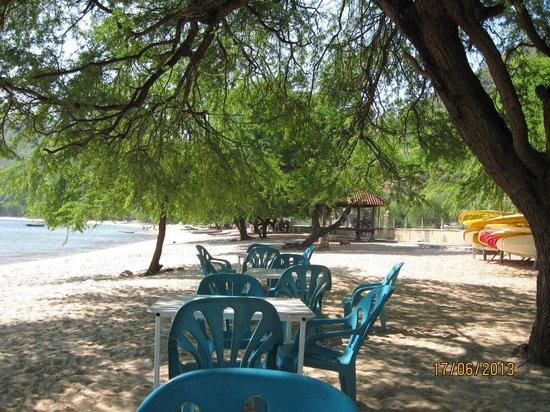 Beachside Hotel: Beach View