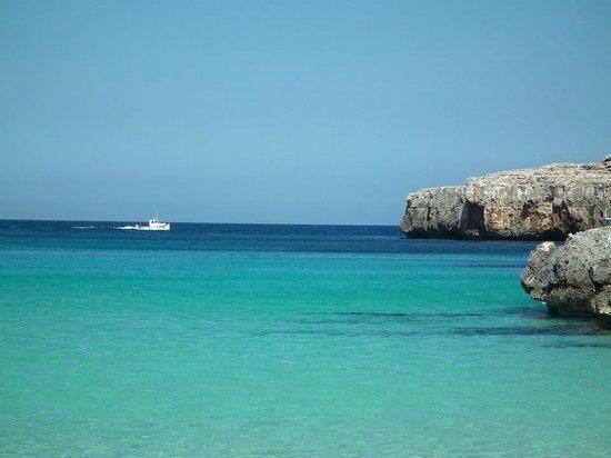 OLA Aparthotel Cecilia: Cala Marcal beach
