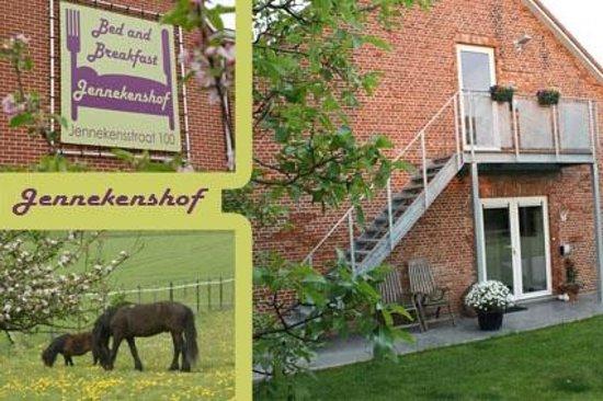 B&B Jennekenshof: Jennekenhof