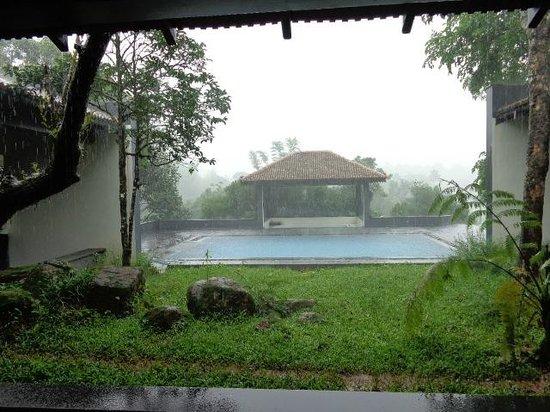 Pool in the rains picture of taj madikeri resort spa - Resorts in madikeri with swimming pool ...