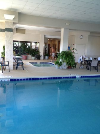Holiday Inn Chicago-Tinley Park-Convention Center: Pool area