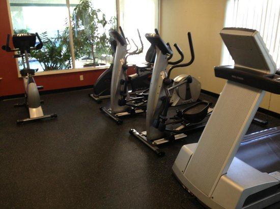 Holiday Inn Chicago-Tinley Park-Convention Center: Exercise room