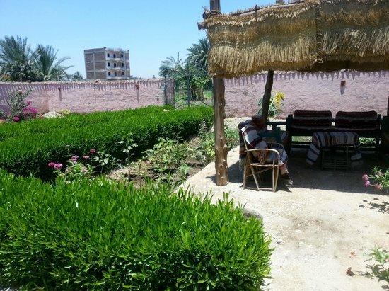 Al Baeirat Hotel: PRIVATE COURT YARD