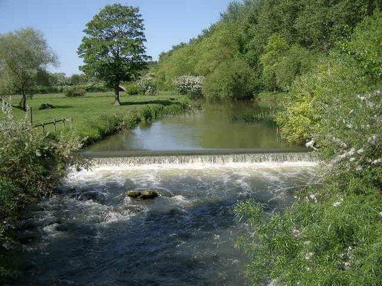 Mill Farm Bed & Breakfast: Local stream