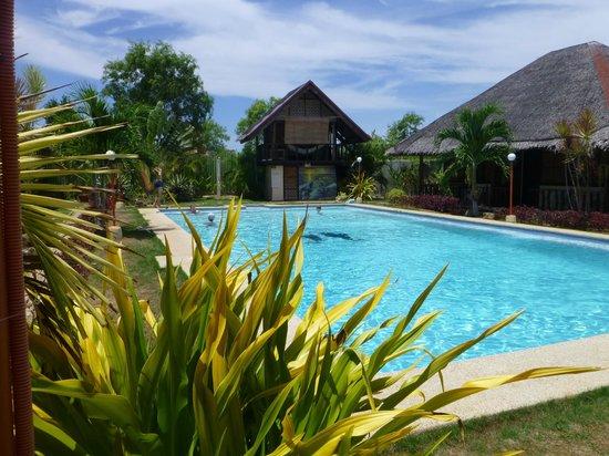 Villa Belza: Les bungalows autour de la piscine, avec au fond hamac en mezzanine.