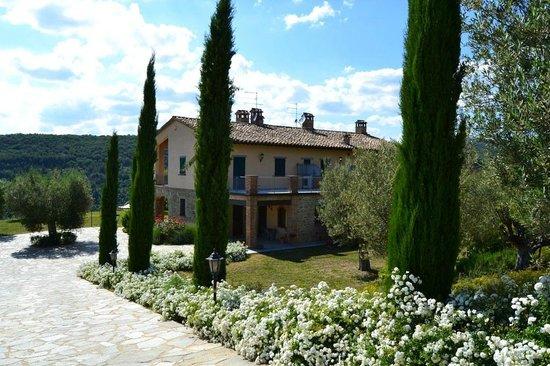 Villa Umbra La Maesta: La Maestà Villa Umbra