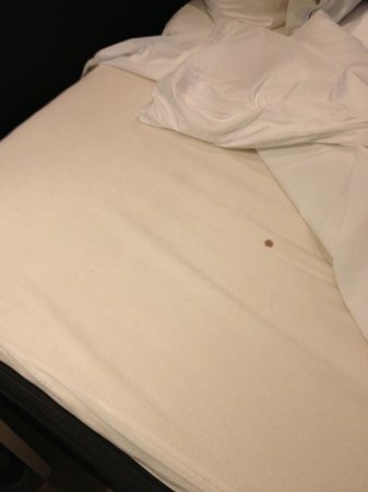 Hotel JL No76: controllate la biancheria del letto.....