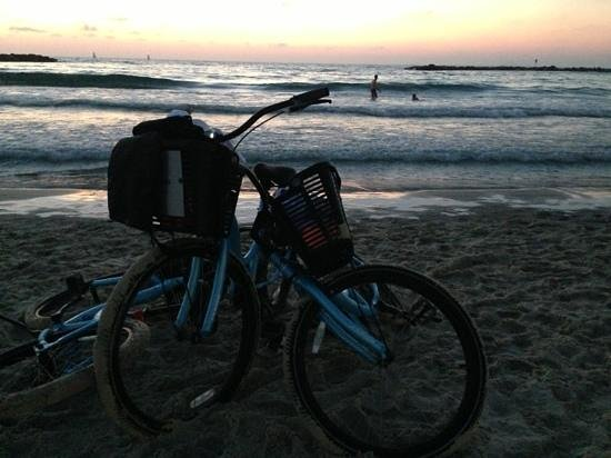 Sheraton Tel Aviv Hotel: beach bike ride