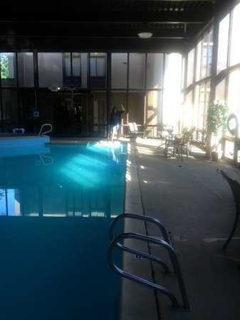 Quality Inn Historic East - Busch Gardens Area: The swimming pool